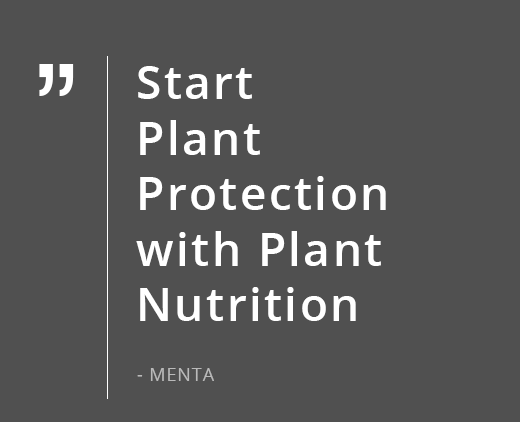 Start <br>Plant Protection with Plant Nutrition